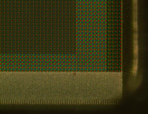 matriz bayer al microscopio