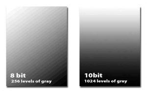 escala de grises en profundidad de bits firecapture